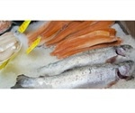 Study shows fatty fish and camelina oil boost HDL and IDL cholesterol