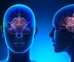 Limbic System and Behavior