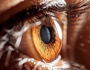 Air Pollution and Eye Health