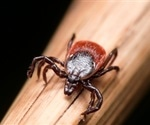 "Ticks and mosquitoes a ""growing health problem"" says CDC"