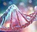 Cloning Human Cells