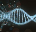 Study reveals the genetics underlying cerebral palsy and autism