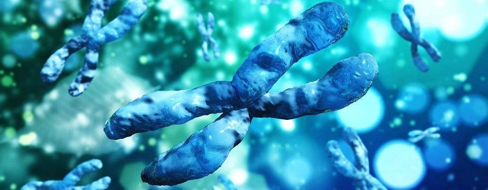 Study establishes the importance of haploid cells