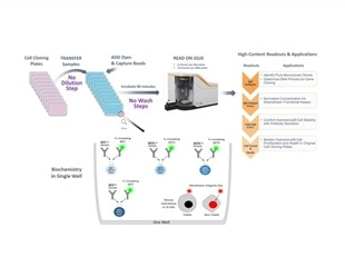 A Novel Way to Expedite Antibody Discovery with the Intellicyt® Mouse IgG Type and Titer Assay Kit