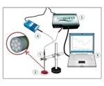Spectral Fiber Sensors for Cancer Diagnostics