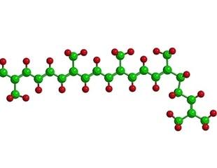Encapsulation of Lycopene