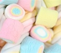 Revisiting the marshmallow test