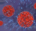 New model of genetically engineered immune cells may help fight solid tumors