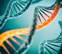 Scientists uncover key control mechanism of DNA replication