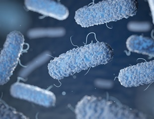 Researchers discover antibiotic that could prevent diarrhea caused by C. difficile