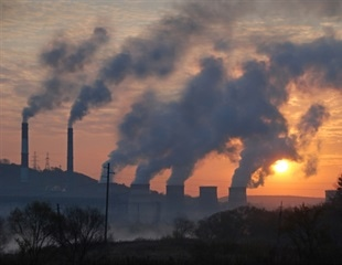 Early life exposure to traffic-related air pollution may cause structural brain changes at age 12