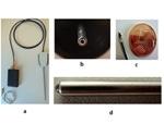 Tumor Margin Detection Using Fiber Spectroscopy