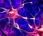 Parkinson's treatment boosts the number and strength of brain cell 'batteries'