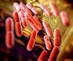NMR-based Metabolomics Determines Beneficial Fermentation Characteristics of Lactic Acid Bacteria