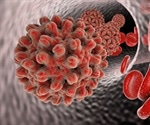 Closed Circular DNA and Hepatitis B Infection