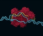 Researchers discover why CRISPR gene editing sometimes fails