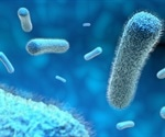 Study sheds light on how good bacteria prevent gut inflammation