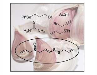Chemists synthesize garlic ingredient from readily available components