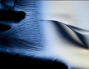 How Do Polarized Light Microscopes Work?