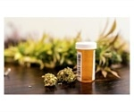 UQ drug expert supports current medicinal cannabis policies in Australia