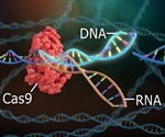 An Introduction to CRISPR/Cas9 Genome Editing