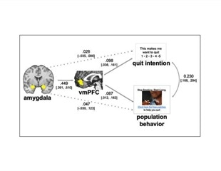 Neuroimaging predicts influence of anti-smoking media campaign