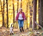 Dog owners live longer