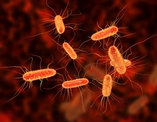 Good news, bad news: lower antibiotic use, more antibiotic resistance in UK
