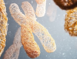 Scientists successfully create age-resistant mice with hyper-long telomeres
