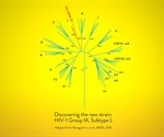 New strain of HIV discovered and sequenced