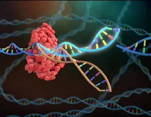 First images of new gene editing complex which could upgrade CRISPR