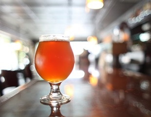 Strong beers that contain gut-friendly bacteria may help fight obesity