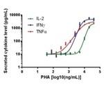 Simultaneous Measurement of T-Cell Activation via Proliferation, Cytokine Secretion and Differentiation