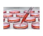 AMSBIO's Detachin provides rapid and efficient cell detachment