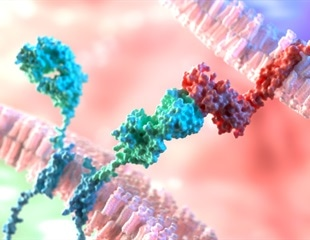 CAR-T cell therapy could be on the horizon for patients with lupus