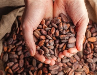 Daily cup of cocoa may reduce tiredness in multiple sclerosis