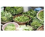 Eating leafy green vegetables may help maintain muscle strength and mobility