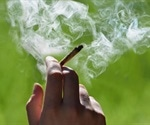 High potency cannabis use linked to psychosis finds study