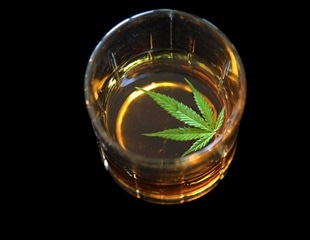 Alcohol, Cannabis and Other Drugs: A Pharmacological Evaluation