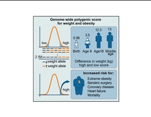 New scoring system based on genetic markers predicts obesity risk at birth