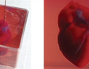 Scientists create a functioning 3D printed heart