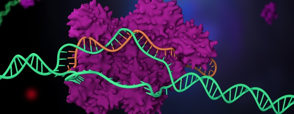 Newly discovered molecules safely halt the gene editing process