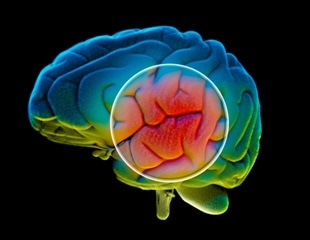 Light therapy may dramatically reduce neurodegeneration in Alzheimer's disease