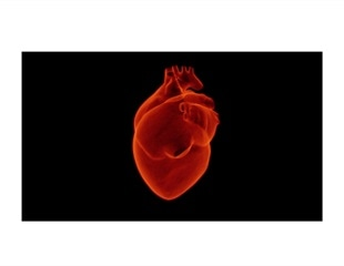 Study finds shortcomings in long-term care for heart failure patients in the UK