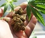 Does Smoking Marijuana Affect Sperm?