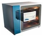 iPSC High-Throughput Screening