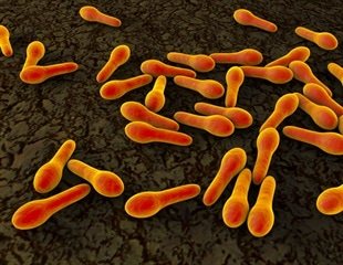 Antidepressants can increase risk of C. difficile infection in depressed patients