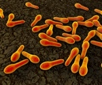 New treatment for C.diff infections reduces recurrences by 40%, study finds