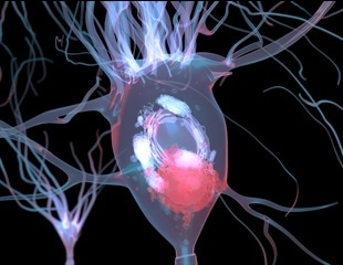 Scientists identify early signs of Parkinson's disease years before symptoms develop