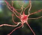 Ultra-Small Microelectrode Biosensors for Brain Injury Analysis